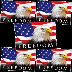 Freedom-Tract-Bundle-400x