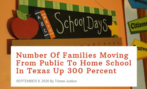 Federalist-article-School-Days